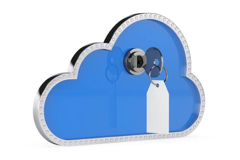 Dynatrace entra nel mercato Rasp cloud